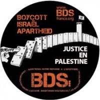 BDS France Montpellier : Gilets jaunes contre l'apartheid israélien