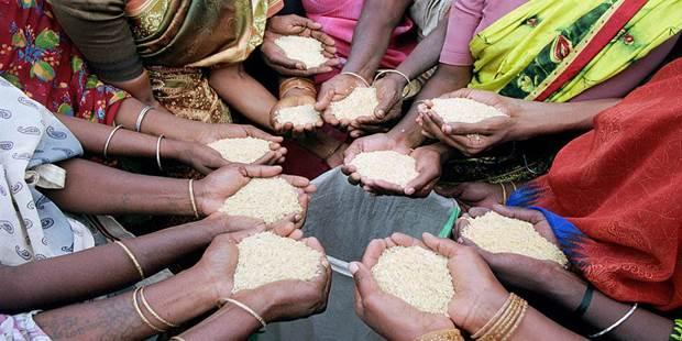 La sécurité alimentaire repose sur le commerce