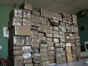 PNUCID (PROGRAMME DES NATIONS UNIES SUR LE CONTRÔLE INTERNATIONAL DES DROGUES)
