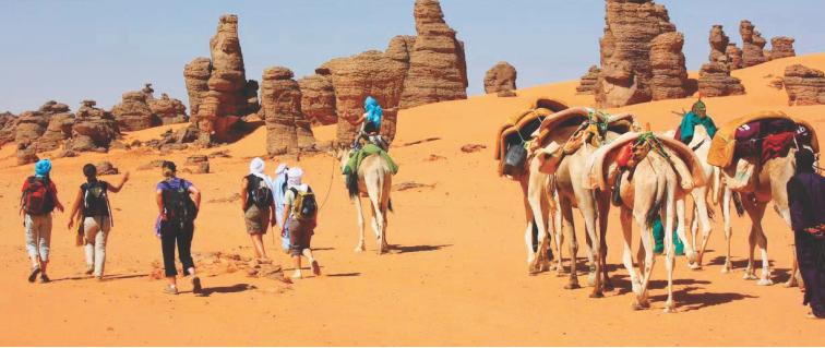 Le Sahara verdoyant tous les 20000 ans