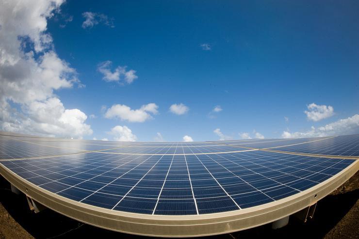 Des éoliennes et des centrales solaires pour irriguer davantage le Sahara
