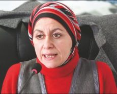 Algérie / Louisa Aït Hamadouche:« L'option de la Présidence collégiale est un bon compromis temporaire »