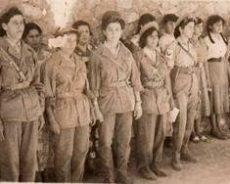 Algérie / « Les Djamilates »