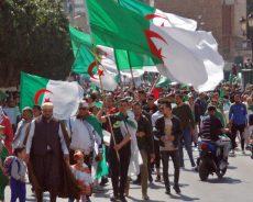 Algérie / Phase critique : dialoguer avec qui ?