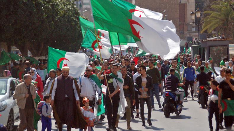 Constituante, tirage au sort : les initiatives de démocratie participative fleurissent en Algérie
