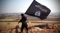 Les nouveaux territoires de Daesh