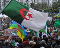 Courage et maturité du peuple : L'Algérie en apesanteur
