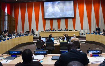 Conseil Economique et Social des Nations Unies (ECOSOC) : Déclarations