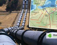 Le Gaz algérien rapporte plus de 150 millions d'euros à la Tunisie