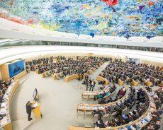 Bélarus : les droits humains et les libertés fondamentales demeurent bafoués, selon une experte de l'ONU