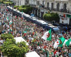 Algérie / Les bonnes âmes de la transition