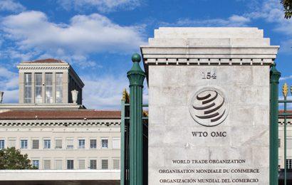 Le commerce devrait contribuer à la réalisation des ODD, selon le chef de l'OMC