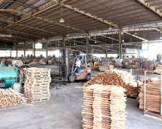 Le CPTPP apporte opportunités et défis à l'agriculture vietnamienne