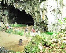 Nouvelle espèce humaine découverte aux Philippines