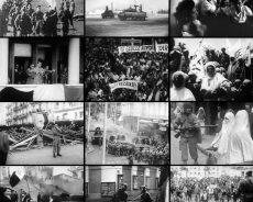 France / Gilles Manceron, Malika Rahal, Amar Mohand-Amer- Les disparus de la guerre d'Algérie du fait des forces de l'ordre françaises : vérité et justice
