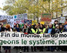 Ecologie / Nous allons vers la sixième extinction : les pays industrialisés premiers responsables