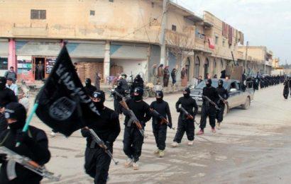 Libye / Enjeux des affrontements armés en Tripolitaine : la résurgence de l'Etat islamique