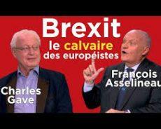 Brexit : le calvaire des européistes