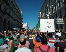 Algérie / Les arrestations opérées parmi les membres de l'opposition sont-elles fondées?