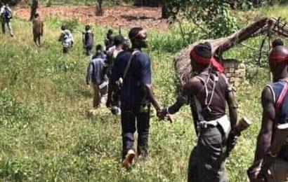 Le conflit anglophone au Cameroun. Un dialogue sans partenaires