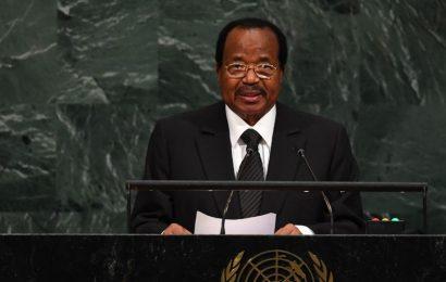 «Les Nations unies ont la responsabilité historique de résoudre la crise au Cameroun» – exclusif