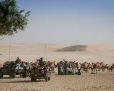 Sahel : une cécité volontaire ?
