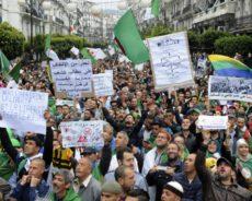 Algérie / Et l'organisation de l'«Élite» ?