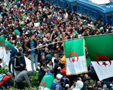 Algérie / Quelles perspectives pour le Mouvement populaire ?