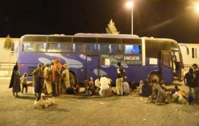 Immigration : L'Algérie compte plus de migrants clandestins que toute l'Europe