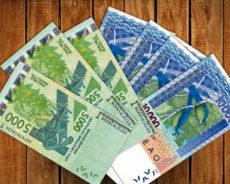Une nouvelle monnaie ou un simple changement de nom en Afrique de l'Ouest?