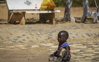 Le passé colonial de la France, réduit à la simple «faute» par Macron, synonyme de massacres