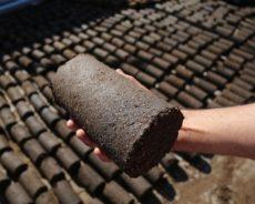 Palestine / Gaza : Transformation des déchets d'huile d'olive en combustible