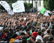 Algérie / L'ANP et le hirak : interrogations et défis