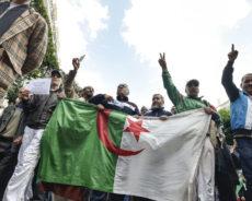 Un ex-colonel de l'Armée de l'air: en Algérie, «il y a une contre-révolution»