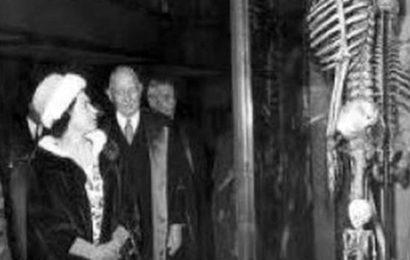 Histoire Occultée : Des squelettes géants d'une hauteur de 7 mètres