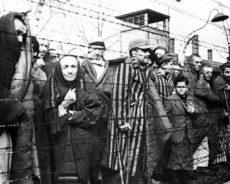 Honte du passé? Pourquoi certains pays cherchent-ils à falsifier l'histoire de la Seconde Guerre mondiale?