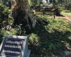 Vietnam / Un témoignage historique de la sauvagerie de Washington
