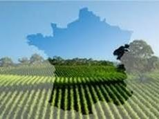 Agriculture française : chronique d'un désastre programmé