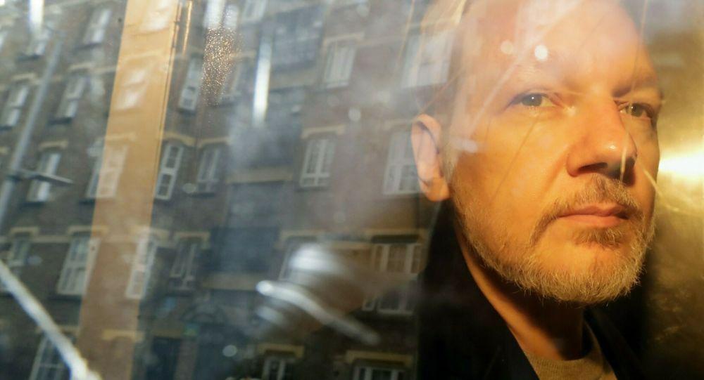 assange profil