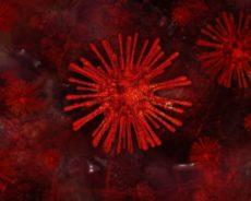 Chine / Coronavirus: l'épidémie «s'accélère», la situation est «grave», selon Xi Jinping