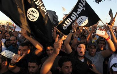 Rapatriement des djihadistes: «ils se moquent de nous, ils se jouent de notre droit»