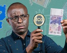Déclaration d'intellectuels africains sur les réformes du franc CFA