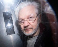 Toute la vérité sur Julian Assange : 'Un système assassin est en train d'être créé sous nos yeux'