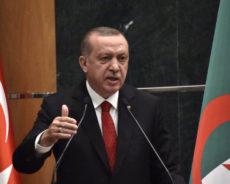 L'Algérie «surprise» par les critiques d'Erdogan sur la colonisation française: le passé de la Turquie dans les têtes?