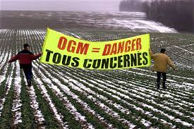 OGM, Glyphosate : que nous cache notre assiette ? (vidéo)