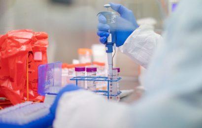 Actuellement élargie à un large essai clinique à Marseille : La chloroquine validée dans le protocole de soins en Algérie au titre d'un essai clinique