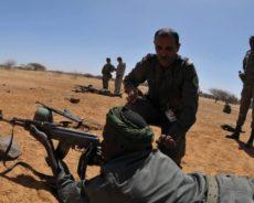 La renaissance de l'«armée des sables». Succès et défis des forces armées mauritaniennes