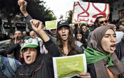 Mahdi Berrached : « Les Algériens ont trouvé dans leur derdja une langue radicale qui a permis d'élever le plafond des revendications »