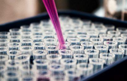 Dix bonnes nouvelles concernant le coronavirus