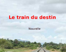LIVRE /  Le train du destin (nouvelle)